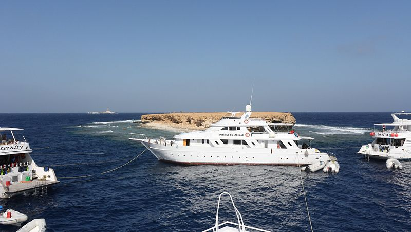 The Brothers Red Sea - Brother Islands Scuba Diving - Red sea diving safari at little Brother