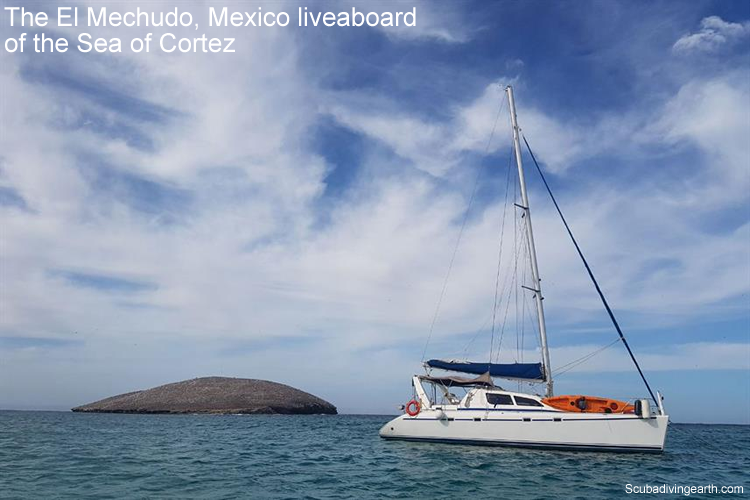 The El Mechudo, Mexico liveaboard of the Sea of Cortez