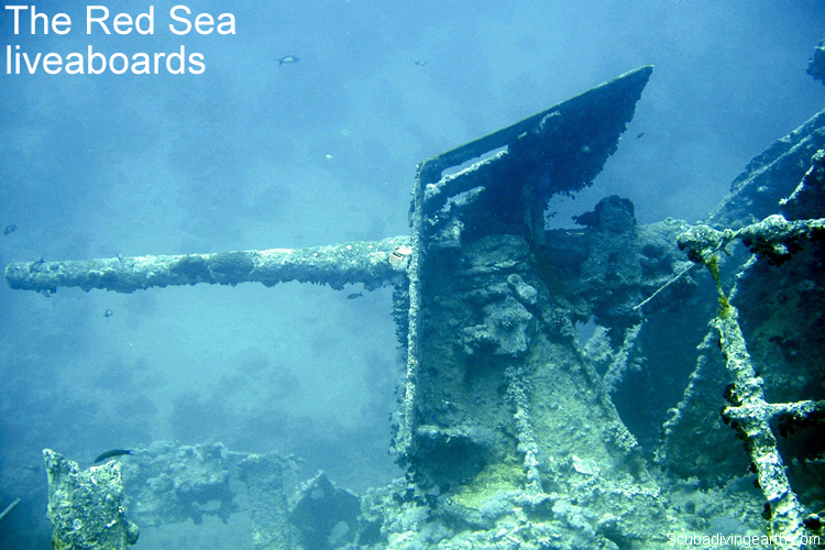 The Red Sea technical diver liveaboards