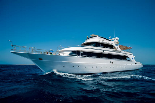 The affordable Golden Dolphin Egypt liveaboard - luxury on a budget