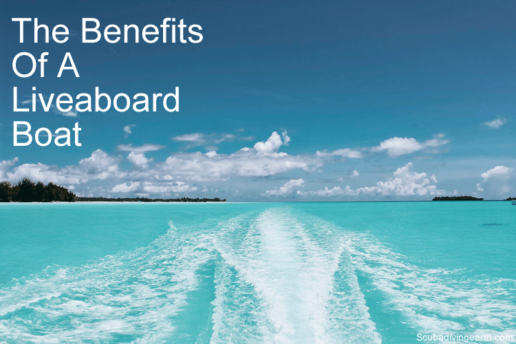 The benefits of a liveaboard boat