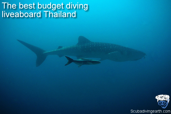 The best budget diving liveaboard Thailand - cheap liveaboards from Thailand