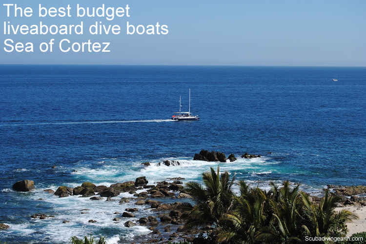 The best budget liveaboard dive boats Sea of Cortez