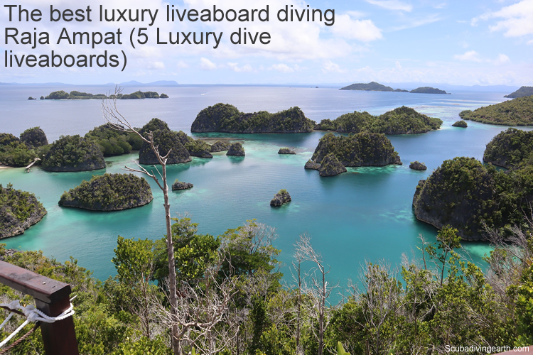 The best luxury liveaboard diving Raja Ampat - 9 Luxury dive liveaboards