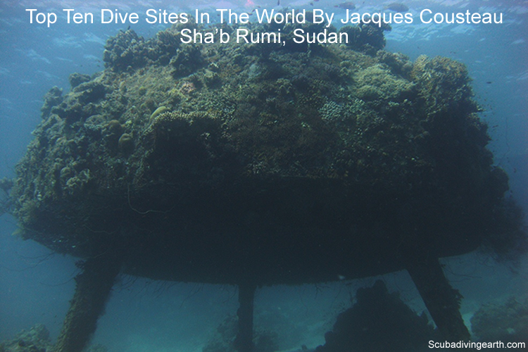 Top ten dive sites in the world by Jacques Cousteau - Sha'b Rumi Sudan