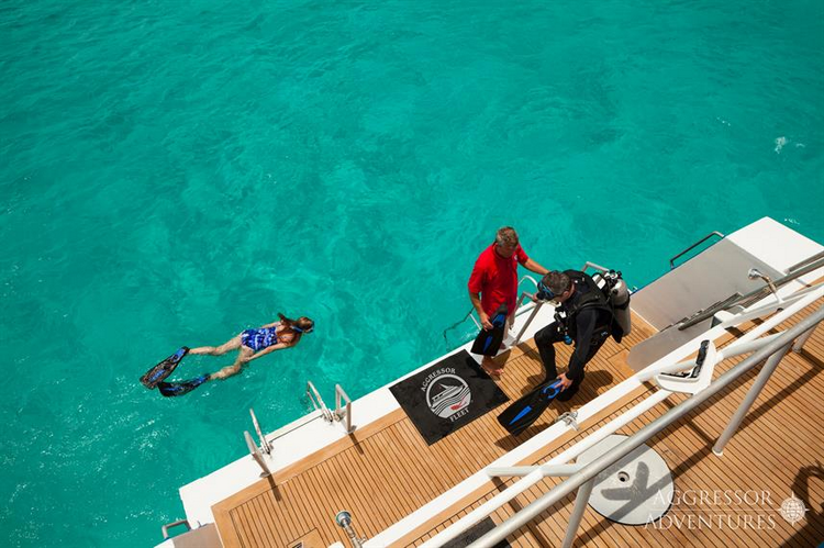 What are the pros and cons of the Bahamas Aggressor Liveaboard