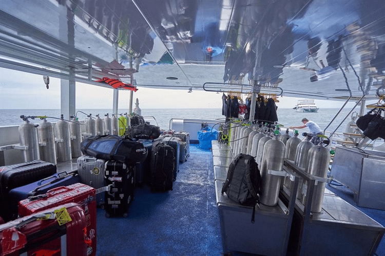What are the pros and cons of the Galapagos Calipso Liveaboard