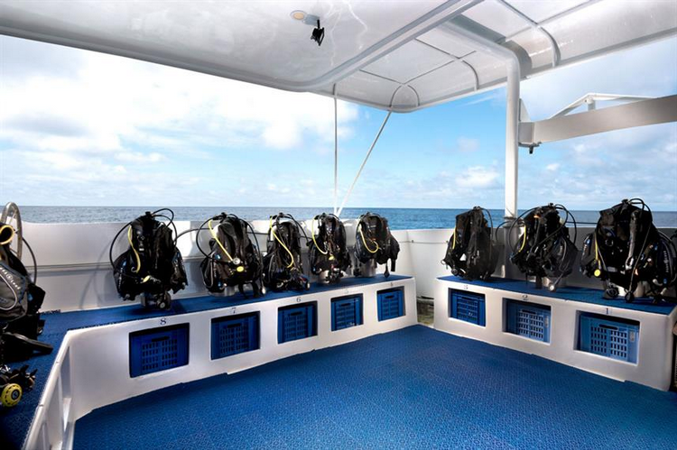 What are the pros and cons of the Galapagos Master Liveaboard