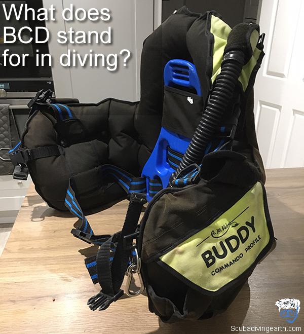 What does BCD stand for in diving
