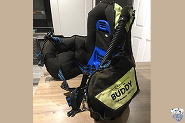 What does BCD stand for in diving?