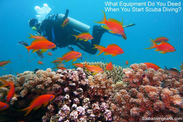 Scuba Diving Equipment Essentials (What Do You Need To Start Diving?)