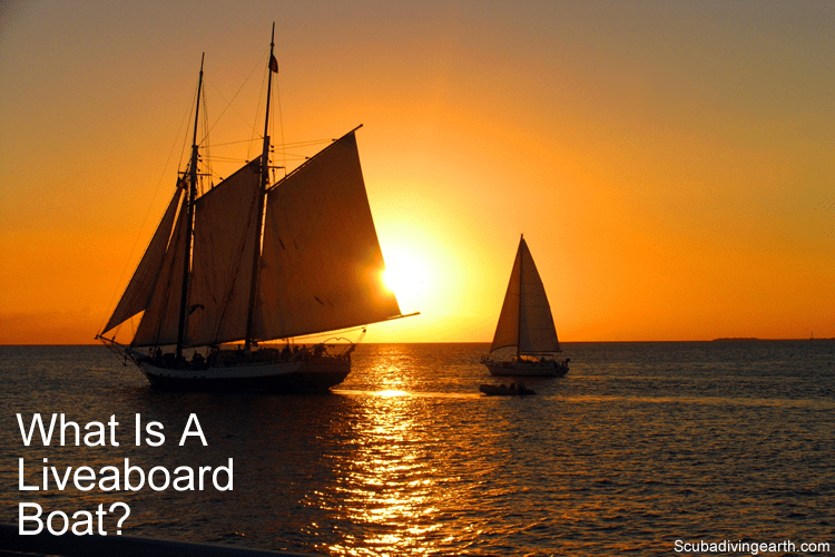 What is a liveaboard boat