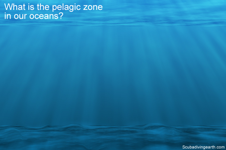 What is the pelagic zone in our oceans