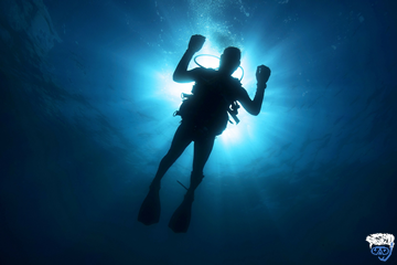 What should you and your buddy do if separated during a dive?