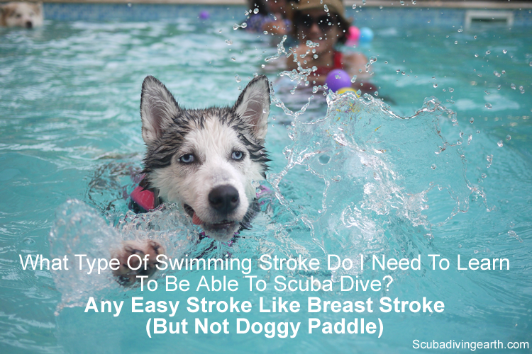 What type of swimming stroke do I need to learn to be able to scuba dive