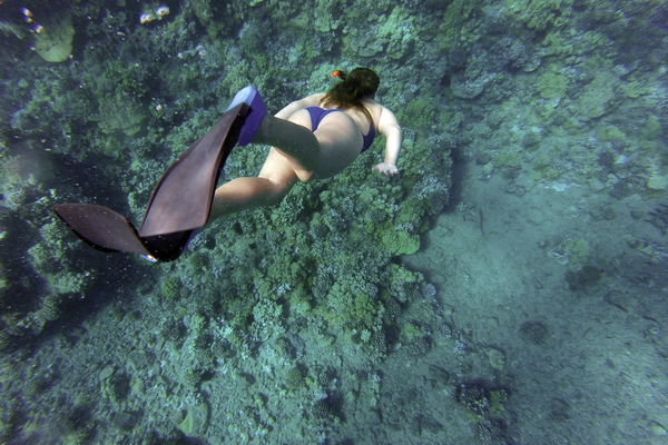 How far underwater do you go when snorkeling large